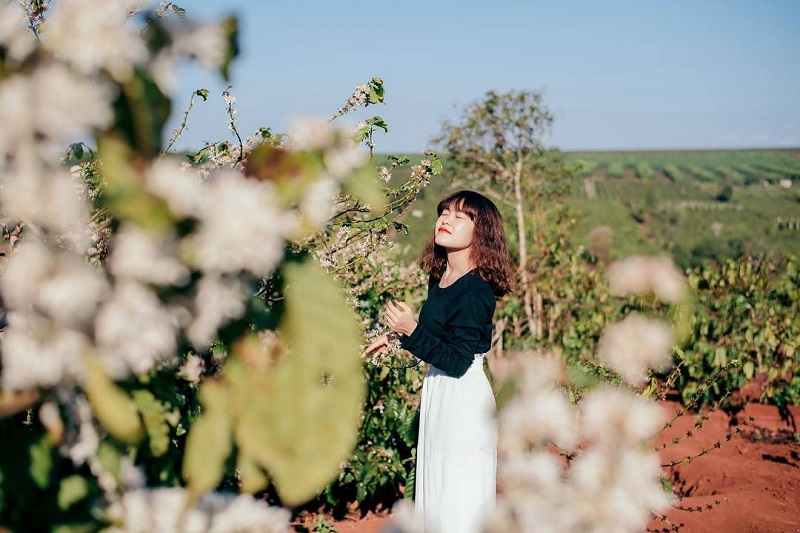 Nữ du khách chụp ảnh cùng thiên nhiên Pleiku