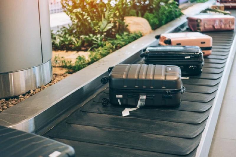 Cắt bỏ những nhãn dán của hành trình cũ trên hành lý ký gửi để tránh xảy ra trường hợp nhầm lẫn