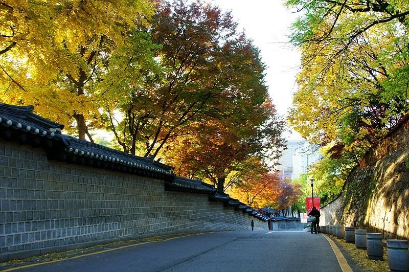 Khung cảnh lãng mạn của đường Deoksugung Doldam vào mùa thu